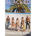Interracial Icon 4 - DVD Blacked