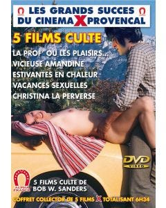 La prof ou les plaisirs defendus, Vicieuse Amandine, Estivantes en chaleur, Vacances sexuelles, Christina la perverse 5 films cultes