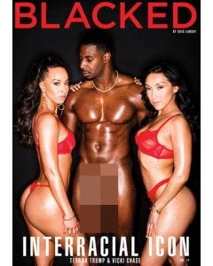 Interracial Icon 11 - DVD Blacked