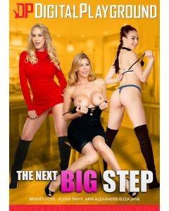 The next big step - DVD Digital Playground